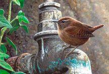 In my garden....Outdoor living / by Teresa Willard