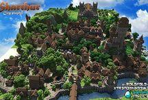 Minecraft surver