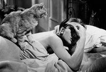 猫とオードリー