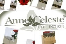 Geschenk TIP !! / Geef het met Bloemen !! Met de verse langhoudbare geconserveerde bloemen van Anne Celeste Collection kun je binnen komen en zal de ontvanger er nog vele maanden van kunnen genieten