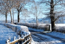 Ribchester / The place we live