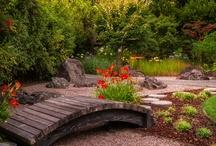 Yards and Decks / Summer Pleasures
