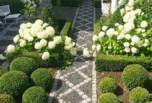 Πλαϊνοί κήποι