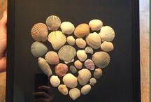 criaçoes conchas