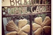 Brooklyn Botanic Gardens ~
