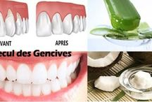 Gencive / Dents
