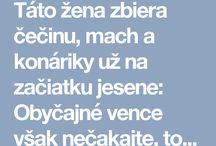 čečina