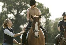 Pferdesport / Alles über Pferde und den Pferdesport