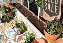 The Inclusions Garden / Ideas for our School Garden