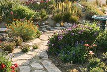 Il mio giardino / Giardino e arredamento da giardino