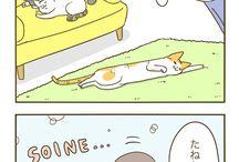 ぬこ 漫画