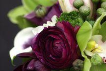 Flores & Frutos