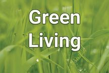 Green Living / Live more sustainably and save money while saving the earth.