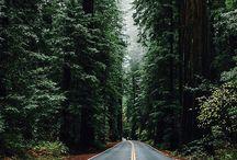 Caminos / Todo tipo de caminos, carreteras, autopistas, vías de tren, caminos rurales, vías marítimas.