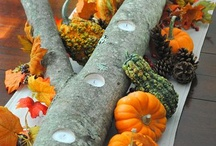 Fall Centre Pieces / Fall Decorating