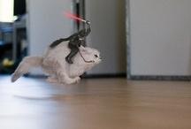 Darth Vader on his new rideXD