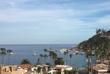 Hotels on Catalina / Here is where you can find some of the great hotels on the Island