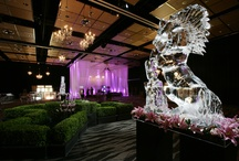 Events / Take a peak inside what is happening around Auckland's premier entertainment complex