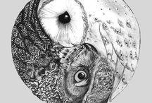 Owls / by gabriella Fuller