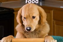 Larry's Gourmet Recipes / Homemade dog food, healthy dog food