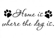 For the love of dogs...