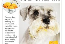Treats for Dogs / by Marci Rodgers