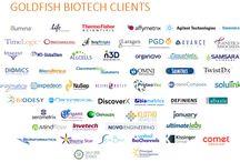 Clients / Selected clients