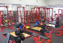 GYM Equipment / Working out and fitness.