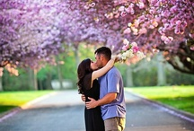 Engagement Sessions / by Katie Cole