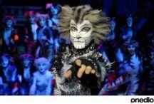 http://www.narsanat.com/cats-muzikali-istanbula-geliyor/