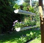 Gardening Ideas / by TDD 28