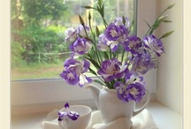 De jolies fleurs / Des jolies fleurs aperçues ça et là sur le web. / by Des Fleurs Pour Tous