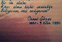 Cemal Sureya / Hayat kısa kuşlar uçuyor...