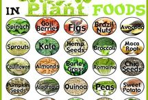 "Plant based foods ""Proteins"""