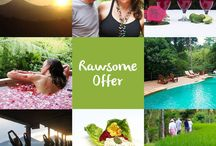 Raw Food / Learn and live the Raw Food concept, enjoy yoga and Balinese discoveries.