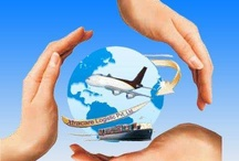 Export and import / freight forwarding