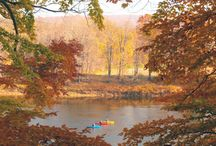 Fall in the Pocono Mountains / It's  a beautiful time in the Pocono Mountains in Fall.