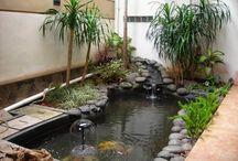 taman kolam mini