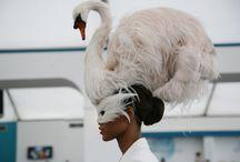 Hats bird feathers, sombreros con pajaros en plumas / Sombreros  plumas pajaros