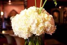 Flower arrangements / by Amanda Burns