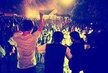 Party Wild