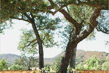 Spanish Oaks Ranch ~ Santa Margarita