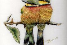 kirjonta embroidery вышивка