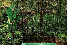 Ofuro Jardim