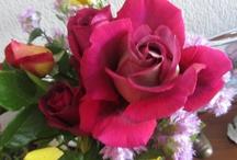 Las flores de mi jardín, frutas y productos de mi huerto