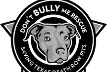 Don't BULLY Me Rescue / by Heather Morris