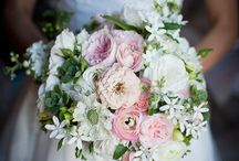 ~ Cinderella's Bouquet ~ / by Loni R Colin