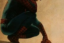 Spidey / True love for the amazing Spiderman .