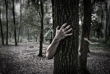 Зомби в лесу