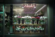 Çiçekçi Mağaza Dekorasyonu Tasarımları